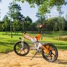 RICH BIT RT730 Bicicleta Eléctricas LCD Inteligente