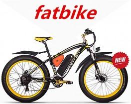RICH BIT ZDC-022 Bicicleta eléctrica 1000W 48V